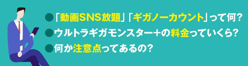 「動画SNS放題」「ギガノーカウント」って何?